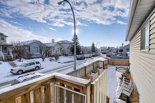 Photo 30: 163 Erin Meadow Green SE in Calgary: Erin Woods Detached for sale : MLS®# A1077161