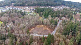Photo 7: 25236 112 Avenue in Maple Ridge: Thornhill MR Land for sale : MLS®# R2546657