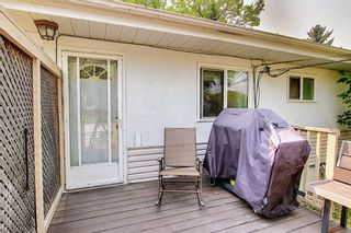 Photo 31: 420 Thornhill Place NW in Calgary: Thorncliffe Detached for sale : MLS®# A1146639