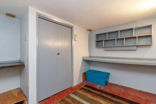 Photo 15: 752 Newbury St in : SW Gorge House for sale (Saanich West)  : MLS®# 872251