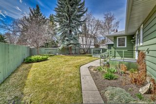 Photo 6: 776 Willamette Drive SE in Calgary: Willow Park Detached for sale : MLS®# A1102083