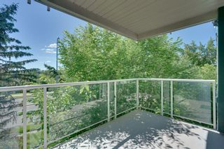 Photo 28: 311 3101 34 Avenue NW in Calgary: Varsity Apartment for sale : MLS®# A1123235
