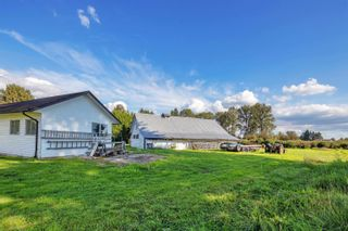 Photo 38: 19658 RICHARDSON Road in Pitt Meadows: North Meadows PI House for sale : MLS®# R2616739