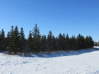 Photo 21: 0 Centreline Road: RM Springfield Vacant Land for sale (R04)  : MLS®# 202103923