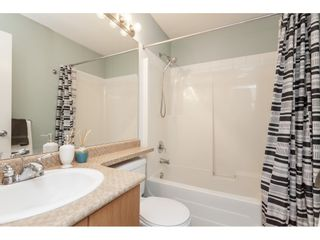 """Photo 15: 86 20460 66 Avenue in Langley: Willoughby Heights Townhouse for sale in """"Willow Edge"""" : MLS®# R2445732"""