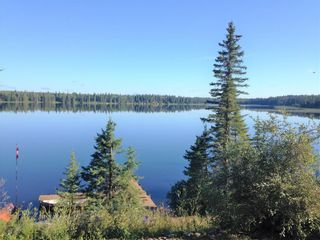Photo 49: 40 Mallard Lane in Duck Mountain Provincial Park: R31 Residential for sale (R31 - Parkland)  : MLS®# 202118513