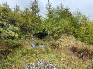 Photo 6: 1091 Front St in : PA Salmon Beach Land for sale (Port Alberni)  : MLS®# 881863
