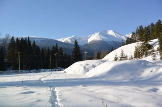 Photo 8: LOT A W 16 Highway in Smithers: Smithers - Town Land for sale (Smithers And Area (Zone 54))  : MLS®# R2533470