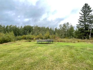 Photo 16: 24021 Twp Rd 620: Rural Westlock County House for sale : MLS®# E4264230