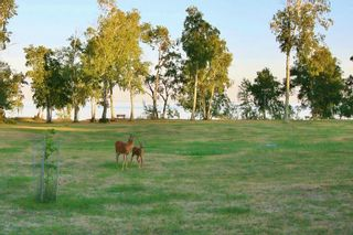 Photo 26: 15 Handorgan Bay in Buffalo Point: R17 Residential for sale : MLS®# 202120486