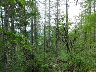 Photo 2: 10630 Tilly Rd in Port Alberni: PA Sproat Lake Land for sale : MLS®# 879576