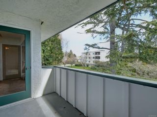 Photo 21: 305 3880 Shelbourne St in : SE Cedar Hill Condo for sale (Saanich East)  : MLS®# 872259