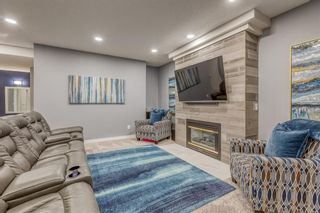 Photo 31: 226 Coral Shores Landing NE in Calgary: Coral Springs Detached for sale : MLS®# A1107142