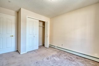 Photo 18: 3117 6818 Pinecliff Grove NE in Calgary: Pineridge Apartment for sale : MLS®# A1069420