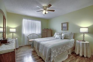 Photo 15: 305 Martinwood Place NE in Calgary: Martindale Detached for sale : MLS®# A1038589