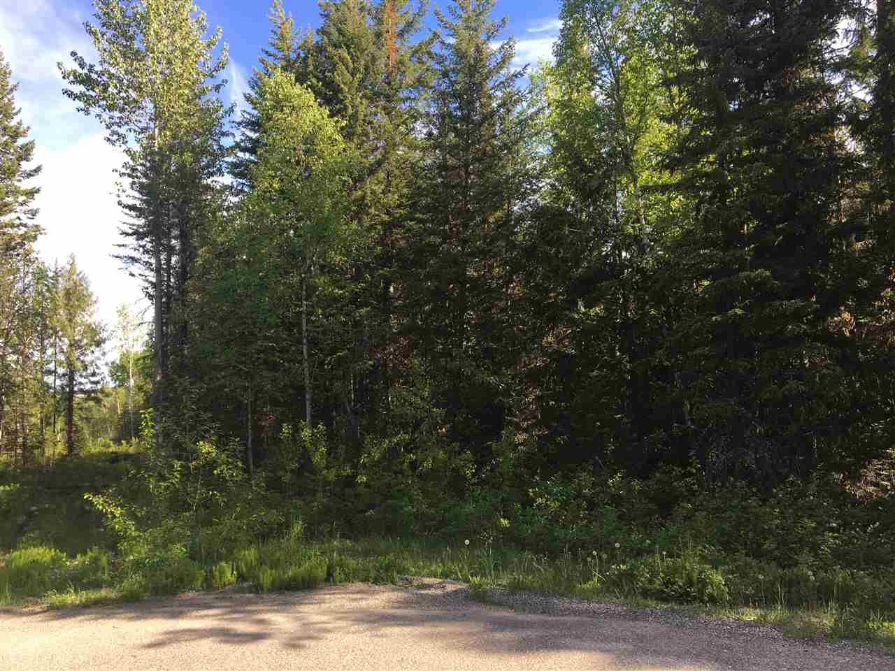 Photo 7: Photos: SHAVER ROAD in Quesnel: Quesnel - Rural North Land for sale (Quesnel (Zone 28))  : MLS®# R2461973