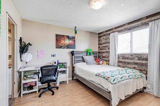 Photo 20: 7 Belleville Avenue: Spruce Grove House for sale : MLS®# E4249541