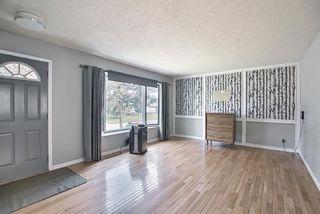 Photo 3: 37 Marbrooke Circle NE in Calgary: Marlborough Detached for sale : MLS®# A1134199
