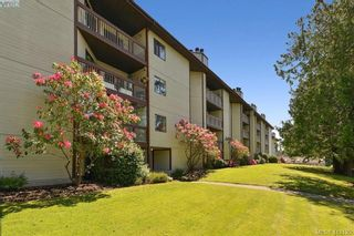 Photo 2: 206 69 W Gorge Rd in VICTORIA: SW Gorge Condo for sale (Saanich West)  : MLS®# 817103