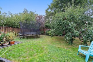 Photo 25: 3111 Service St in : SE Camosun House for sale (Saanich East)  : MLS®# 856762