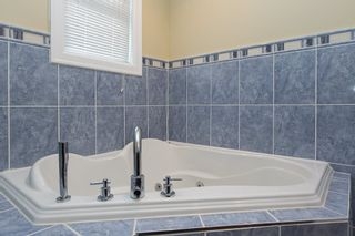 Photo 7: 180 W 62ND AVENUE in Vancouver: Marpole House for sale (Vancouver West)  : MLS®# R2009179