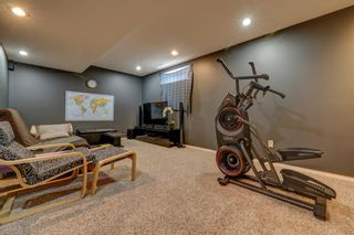 Photo 26: 208 Mt Selkirk Close SE in Calgary: McKenzie Lake Detached for sale : MLS®# A1104608
