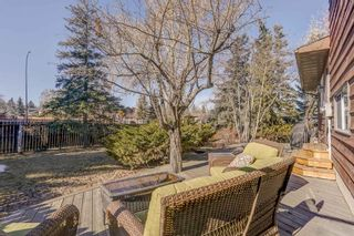 Photo 43: 87 Bermuda Close NW in Calgary: Beddington Heights Detached for sale : MLS®# A1073222