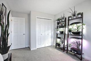 Photo 18: 136 Abingdon Way NE in Calgary: Abbeydale Detached for sale : MLS®# A1097346