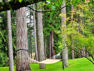 Photo 28: 6455 Phantom Rd in : Na Upper Lantzville House for sale (Nanaimo)  : MLS®# 860246