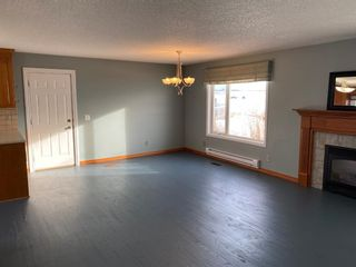 Photo 4: 162 Eagle Lake Place: Rural Wheatland County Detached for sale : MLS®# A1059399