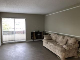 Photo 4: 302 1412 W 14TH AVENUE in Vancouver West: Home for sale : MLS®# R2312905