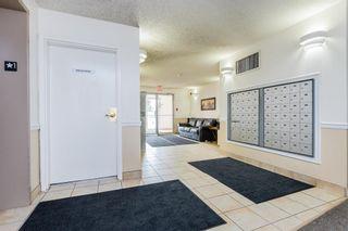 Photo 30: 124 4210 139 Avenue in Edmonton: Zone 35 Condo for sale : MLS®# E4254352