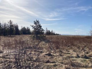 Photo 4: 92-1 Malagash Road in Malagash Point: 102N-North Of Hwy 104 Vacant Land for sale (Northern Region)  : MLS®# 202108290