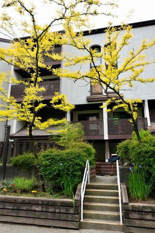Photo 23: 6 385 GINGER Drive in New Westminster: Fraserview NW Townhouse for sale : MLS®# R2585525