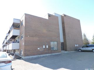 Photo 21: 401 529 X Avenue South in Saskatoon: Meadowgreen Residential for sale : MLS®# SK846376