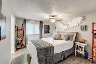 Photo 17: 2416 48 Street NW in Calgary: Montgomery Detached for sale : MLS®# A1063457