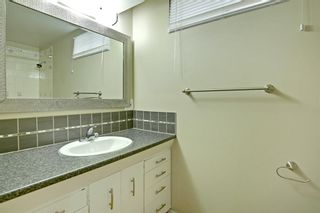Photo 22: 108 Langton Drive SW in Calgary: North Glenmore Park Detached for sale : MLS®# A1009701
