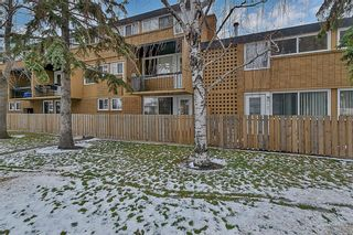Photo 20: 104 607 69 Avenue SW in Calgary: Kingsland Apartment for sale : MLS®# A1088841