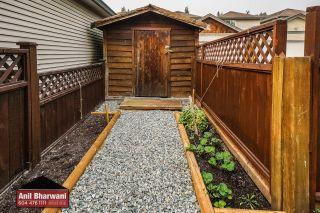 "Photo 57: 24113 102 Avenue in Maple Ridge: Albion House for sale in ""Homestead"" : MLS®# R2499816"