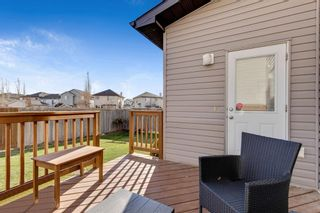 Photo 29: 389 Evanston View NW in Calgary: Evanston Detached for sale : MLS®# A1043171