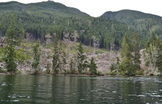 Photo 5: LT 2 Neroutsos Inlet in : NI Port Hardy Land for sale (North Island)  : MLS®# 859849