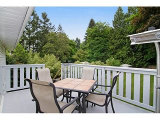 Photo 17: 11628 212TH ST in Maple Ridge: Southwest Maple Ridge House for sale : MLS®# V1122127