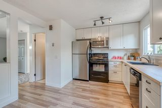 Photo 6: 135 Doverglen Place SE in Calgary: Dover Detached for sale : MLS®# A1058125