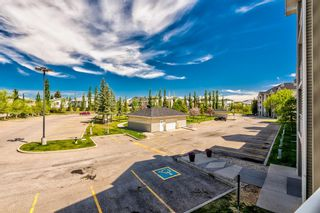 Photo 5: 3209 1620 70 Street SE in Calgary: Applewood Park Apartment for sale : MLS®# A1116068