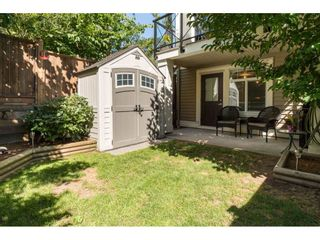 """Photo 18: 43 14377 60 Avenue in Surrey: Sullivan Station Townhouse for sale in """"Blume"""" : MLS®# R2097452"""