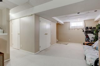 Photo 21: 6912 15 Avenue SE in Calgary: Applewood Park Detached for sale : MLS®# A1068725