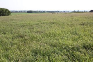 Photo 2: Highway 36 Twp Rd 560: Rural Two Hills County Rural Land/Vacant Lot for sale : MLS®# E4099407