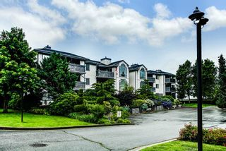 "Photo 1: 305 19121 FORD Road in Pitt Meadows: Central Meadows Condo for sale in ""Edgeford Manor"" : MLS®# R2288007"