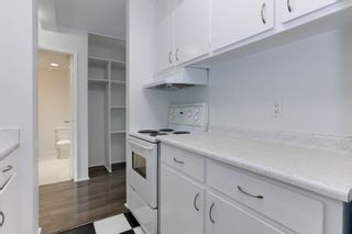 Photo 15: 403 1330 HARWOOD Street in Vancouver: West End VW Condo for sale (Vancouver West)  : MLS®# R2615159