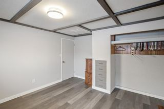 Photo 24: 4131 Doverview Drive SE in Calgary: Dover Detached for sale : MLS®# A1063702
